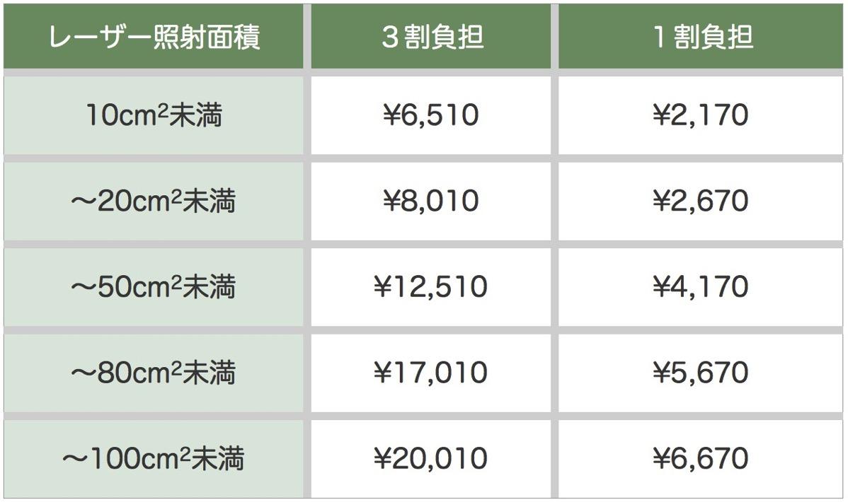 Vbeam保険診療 料金表