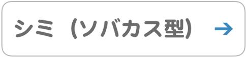 シミ ソバカス型