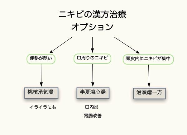 ニキビ フローチャート2