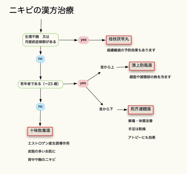 ニキビと漢方フローチャート
